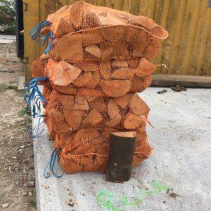 beech firewood logs